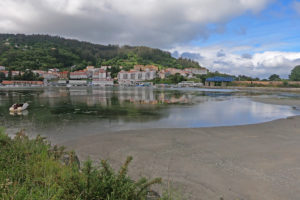 The Camino Inglés – detailed guide & walking stages