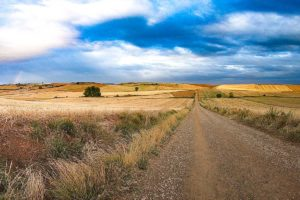 A detailed guide to the Camino Francés; cost, planning, tips