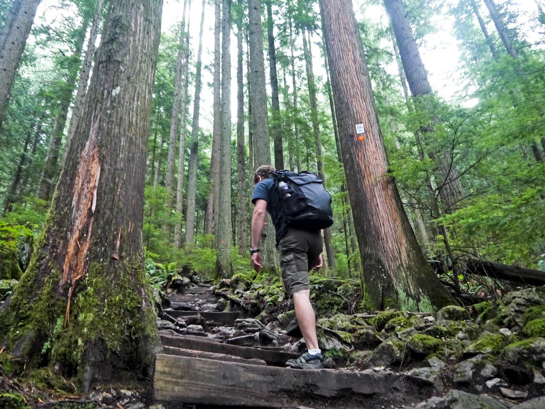 Grouse Grind – a Guide to Hiking the Grouse Mountain
