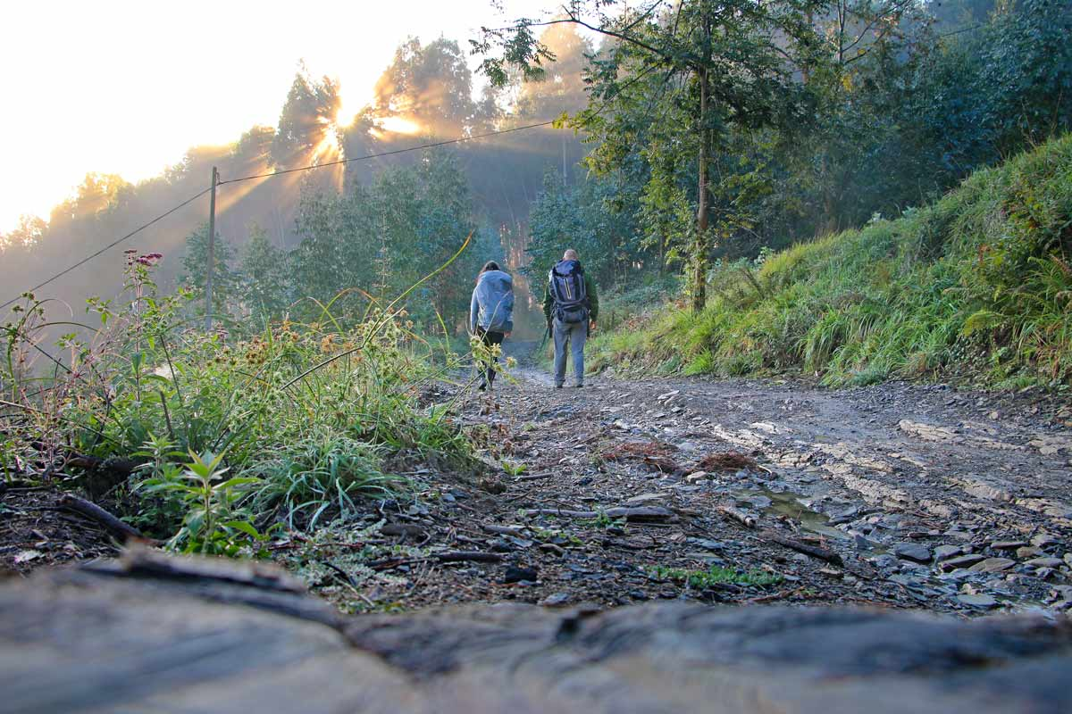 The Camino de Santiago – all you need to know
