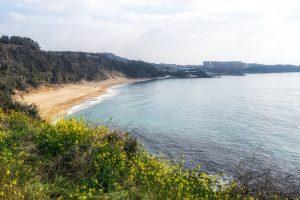 Jeju Island Bucket List: Top 15 Best Things to Do in Jeju Island, South Korea