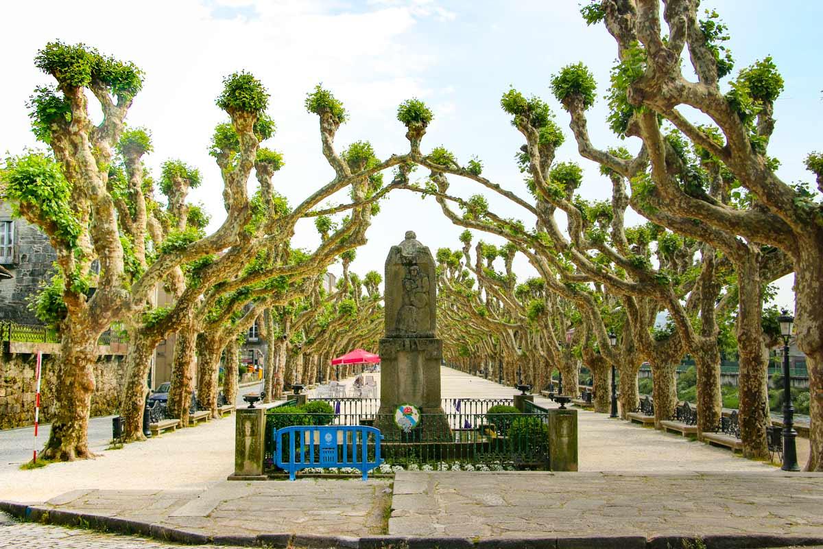 The Portuguese Camino de Santiago – detailed guide & itinerary