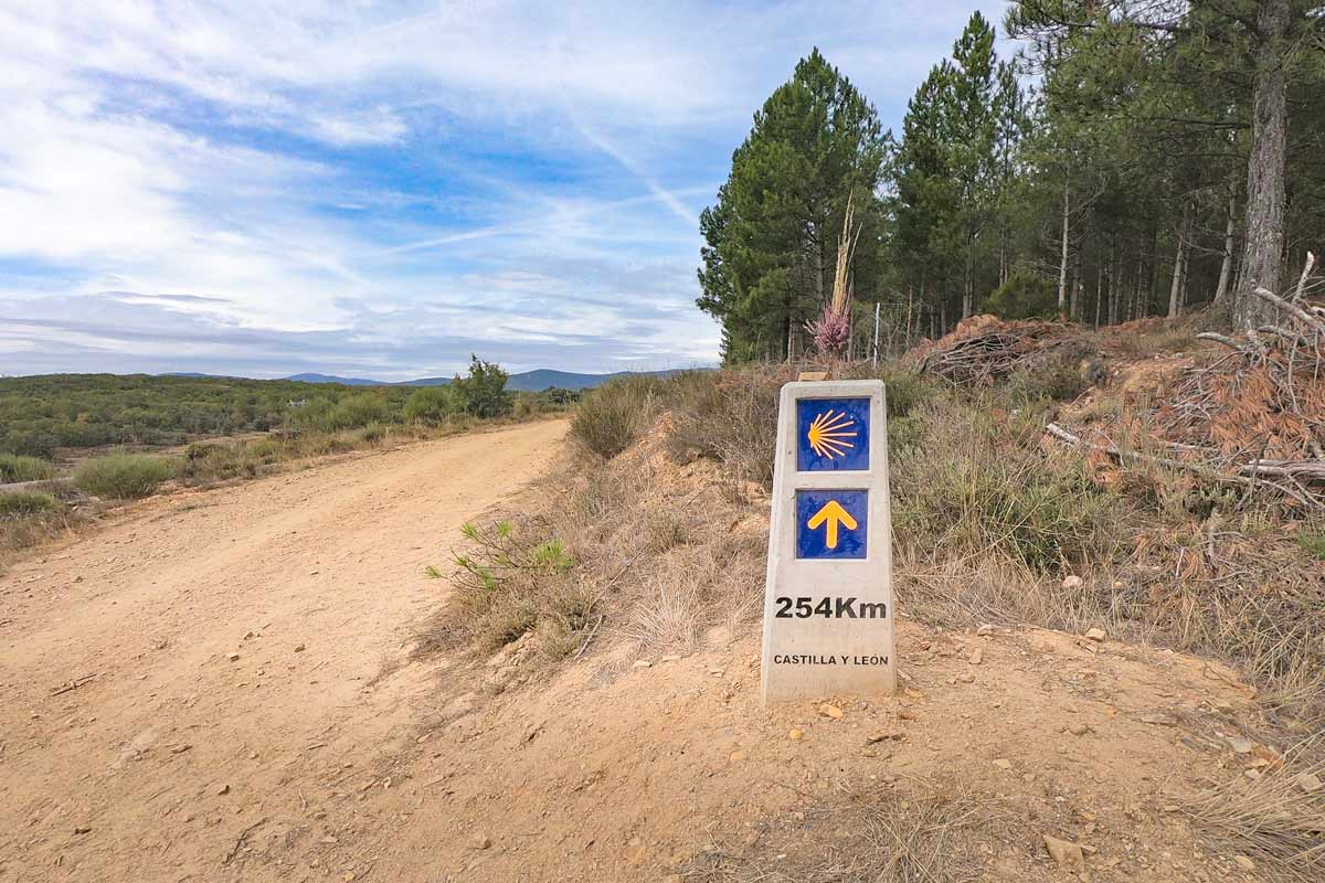 The best Camino de Santiago tips for planning & walking