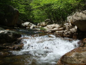 Bucket List: Top 15 Best Things to Do in Ulsan, South Korea