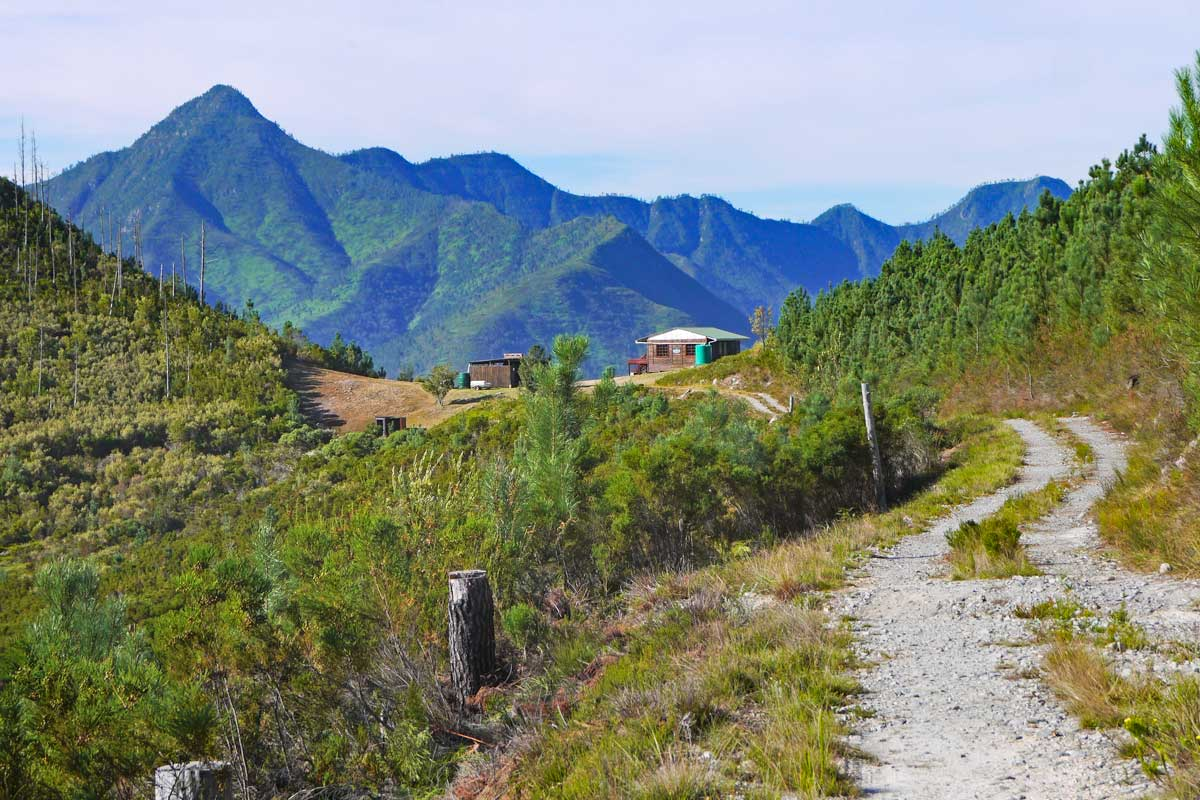 Beautiful Outeniqua Trail – a detailed hiking guide and itinerary