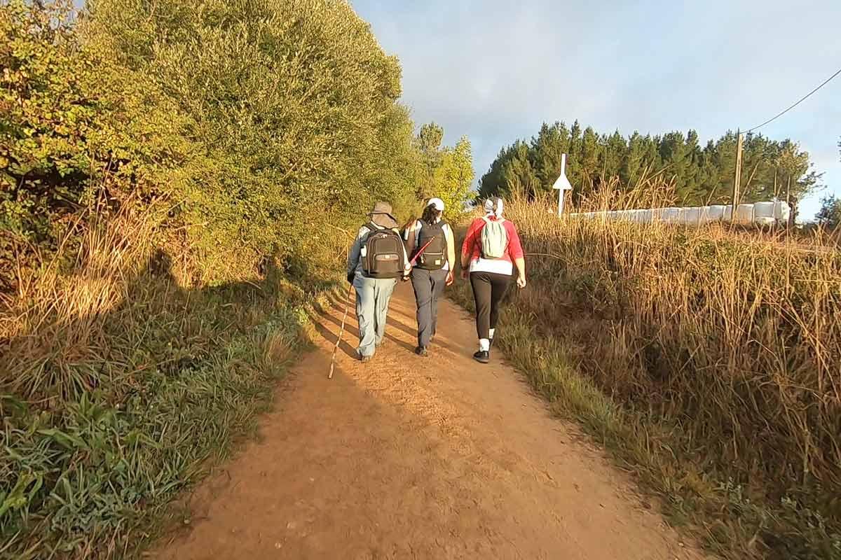 Camino de Santiago training. Zero to Hero program